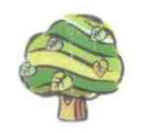 gruenerbaum